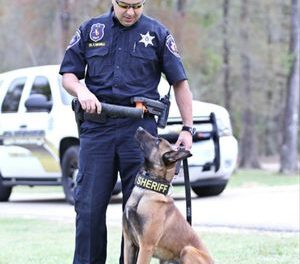 Law Enforcement K9 Gets New Armor