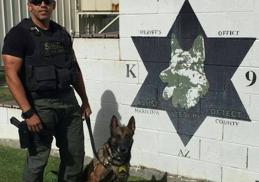 Police K-9 Attacked