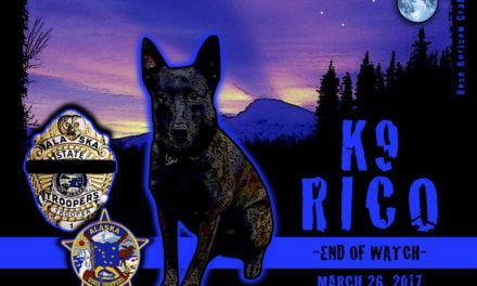 Vehicle Chase Ends in Shooting Deaths of Police K9 and Suspect