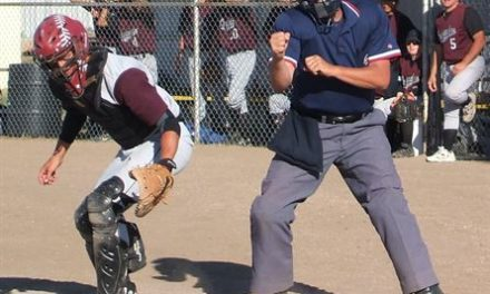 Police Intersect With Youth Sports