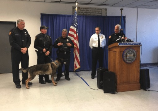 Police K9 Shield Remains in Service After Handler Dies in Training Accident