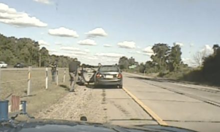 Dashcam Video Shows Shootout With Murder Suspect in Michigan