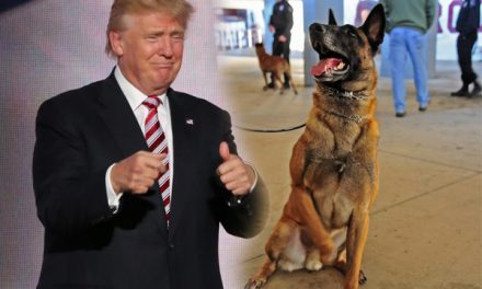 Police K-9 Named Trump May Spark Department Policy Change Because…Trump