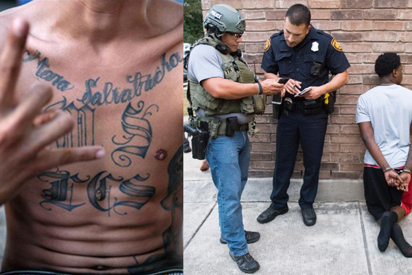 Revealed: MS-13 murdering Americans with machetes, cutting out victim's heart. Politicians: we won't be deporting them.