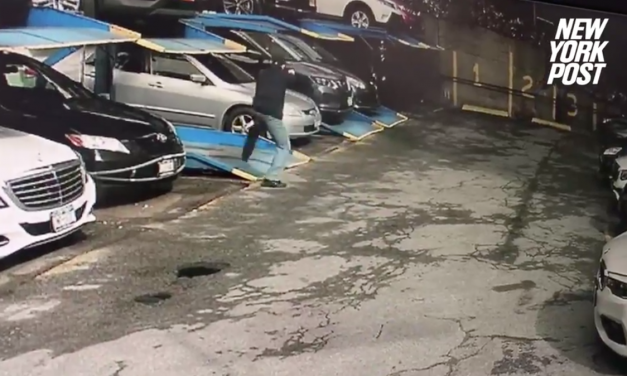 Video: Bystander Roots for Suspect Who Shot NYPD Officer