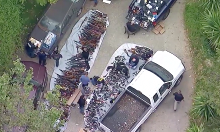 Officials Seize Over 1,000 Weapons in Prestigious LA Neighborhood