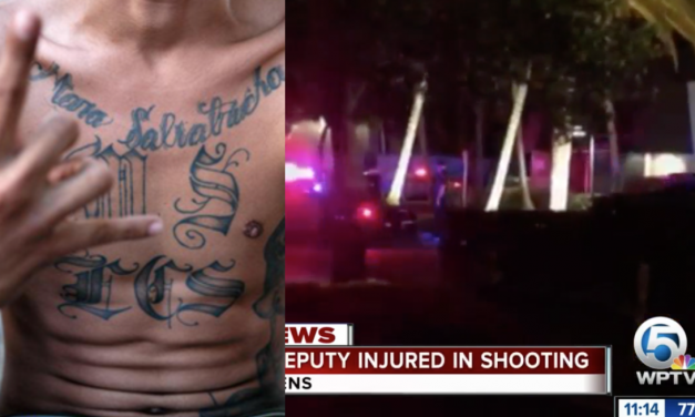 Deputies in Florida engage in deadly firefight with MS-13 member