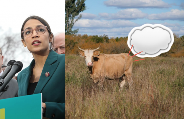 AOC, the Green New Deal and cow fart backpacks