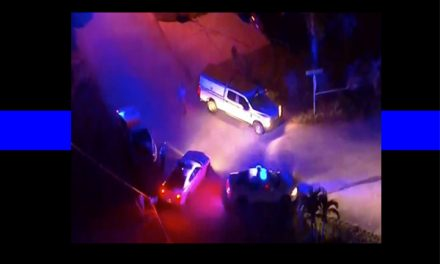 Officers Down: Three cops shot in two incidents involving feral cats, dead girlfriend