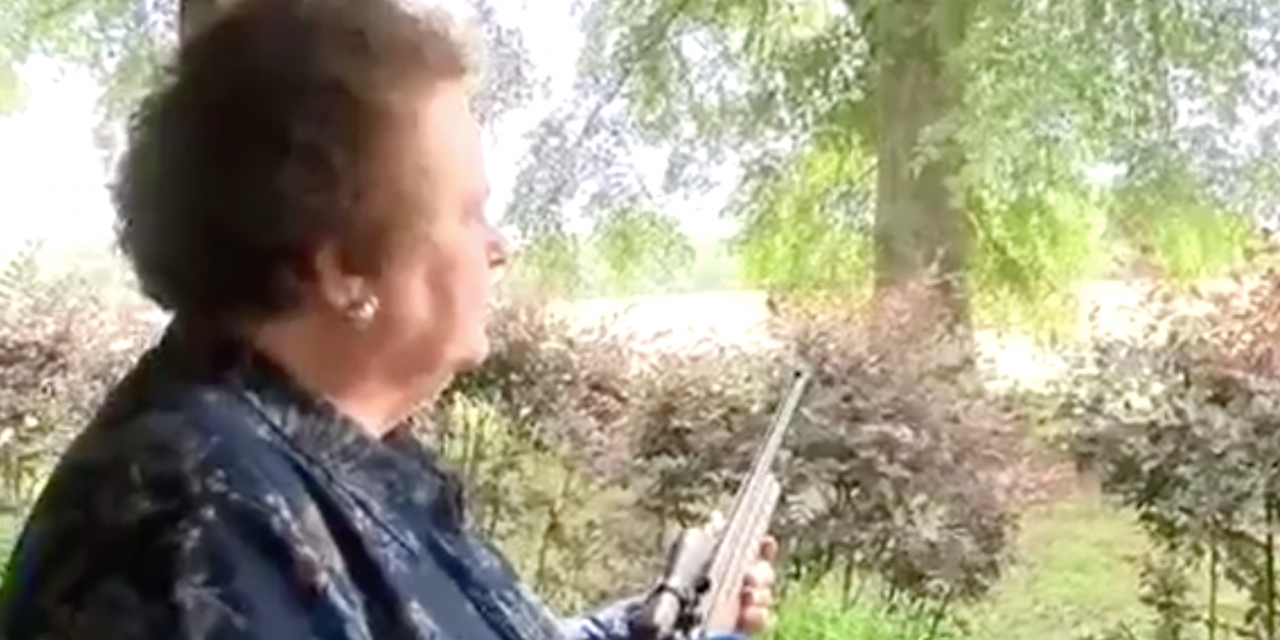 Car thief gets life lesson by grandma who holds him at gunpoint