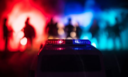 The Love/Hate Relationship Between Cops and Crowds