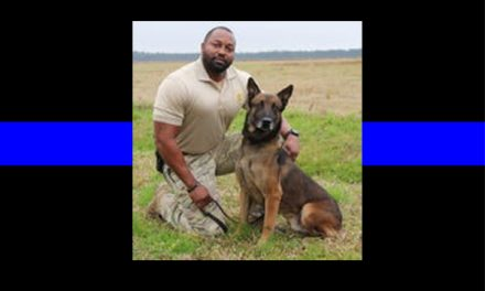 Officer Down: K9 Jake dies after what should have been a routine search