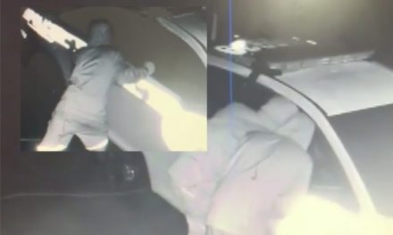 Burglars shoot at neighbor trying to stop them from robbing police car