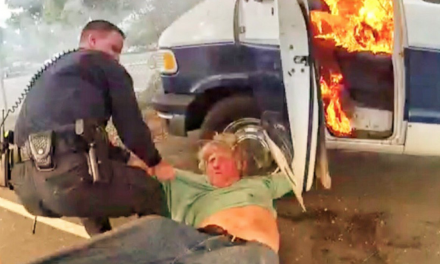 Dramatic Rescue: Officers save mentally distressed man just before burning van explodes