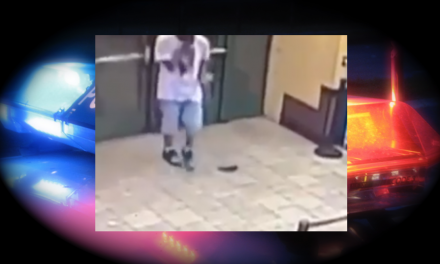 Video: convicted felon drops loaded weapon in cop-filled doughnut shop