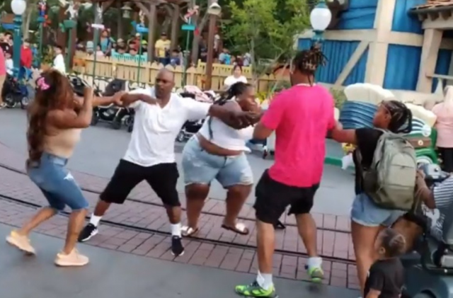 Disneyland gone wild: video shows violent family brawl at theme park