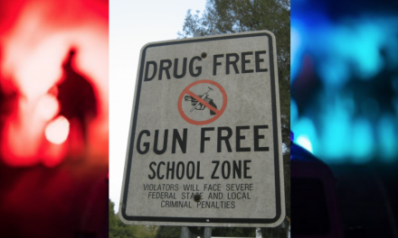 Police: site of Gilroy Garlic Festival mass shooting was a 'gun-free zone'