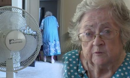 Elderly woman's air conditioner breaks down.  Cops respond with their own AC and fans.