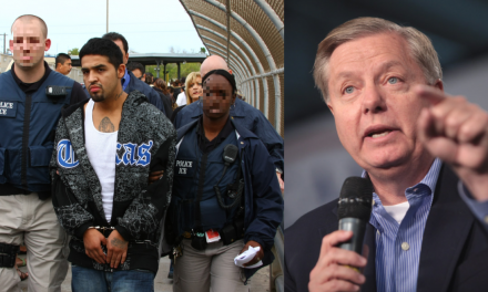 Sen. Lindsey Graham: Let's actually talk about asylum laws. Democrats: Nope.