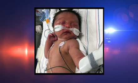 Police search for answers after new newborn baby found alone in the woods
