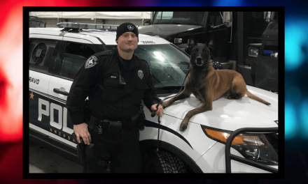 Report: Police take out suspect after he attacks K9 with a sword