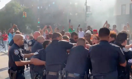 Cops tried to respond to a fire. An angry crowd stood in their way.