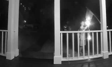 Watch: Suspect caught torching homeowner's American flag