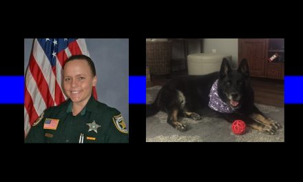 Officers Down: Sergeant dies on honeymoon, K9 dies in surgery