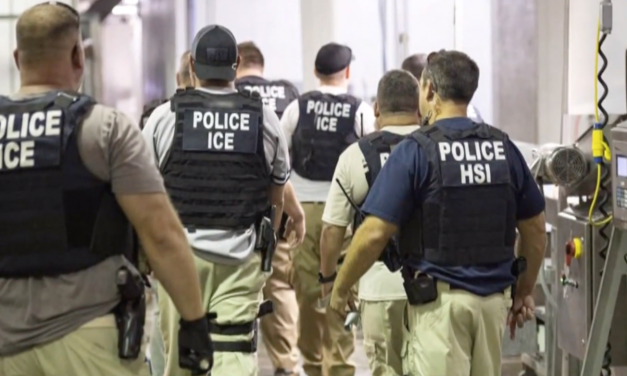 Courts to politicians: cooperate with  immigration laws and ICE or you'll be removed from office