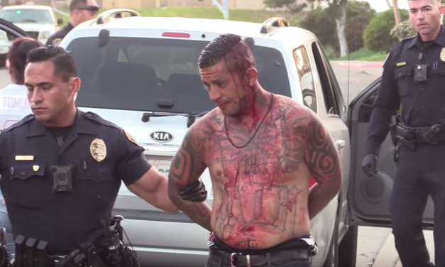 San Diego violence soars as police gang unit told it's stopping too many gang members