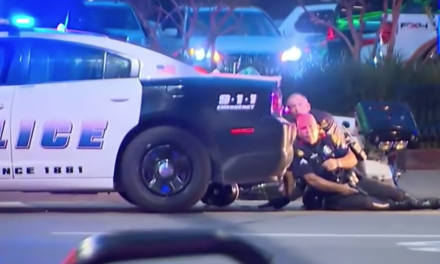Urgent: Movement to disarm police gaining major traction
