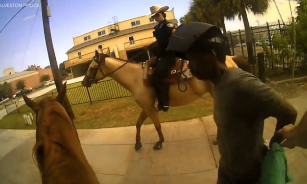 """""""This is gonna look really bad""""- Police release video of controversial horseback arrest"""