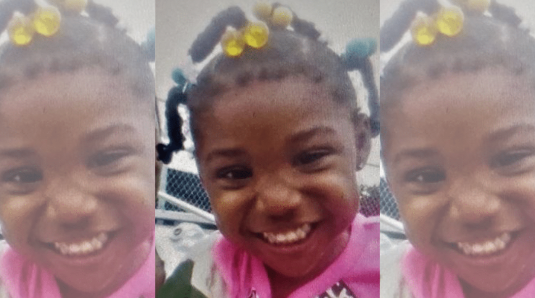 Search for missing 3-year-old girl called off as police make tragic discovery