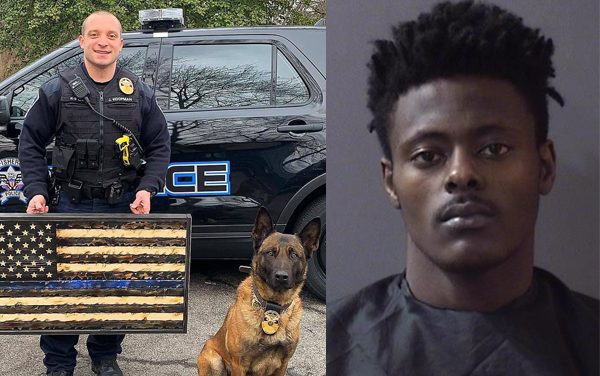 Officer Down: K9 killed in the line of duty – police say this man murdered him