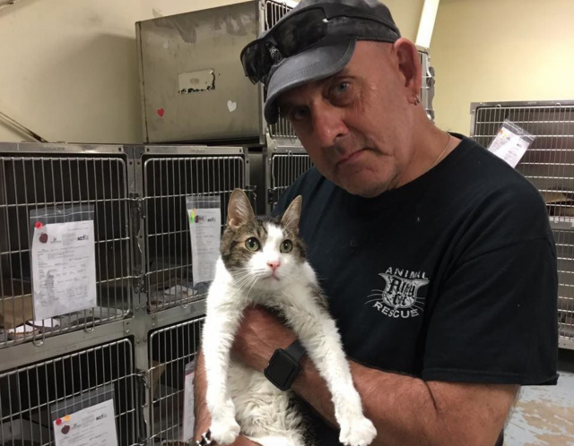 Al Chernoff with a cat at Philadelphia Animal Care and Control Team shelter.