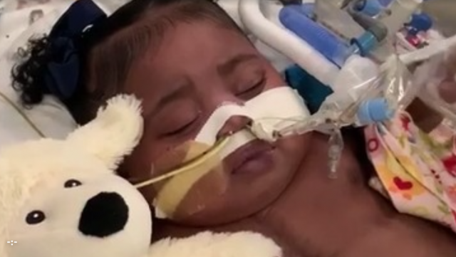 baby pulled off life support