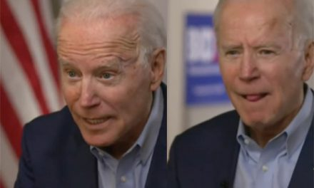 Biden: Illegal immigrants a 'gift' America.  Well, Joe, please don't ever come to our birthday party.