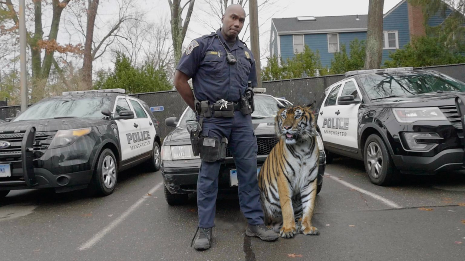 """Police department announces new """"drug sniffing cat"""" named Saber: """"The gangs hate her."""""""