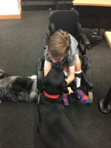 A simple but powerful tool to fight depression for emergency responders: a therapy dog.