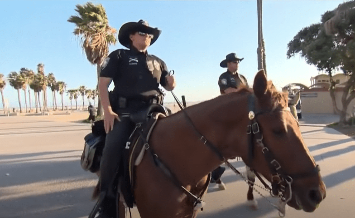 Report: Sheriff says he won't enforce Los Angeles County order to close beaches on Fourth of July