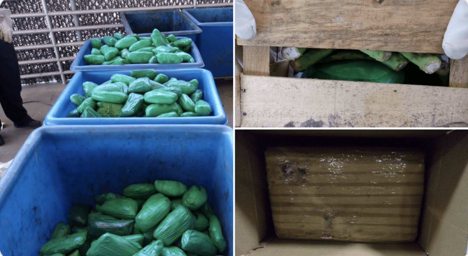 What border crisis? Feds: 668 lbs of meth found in cactus shipment, 15,000 lbs of marijuana in limes