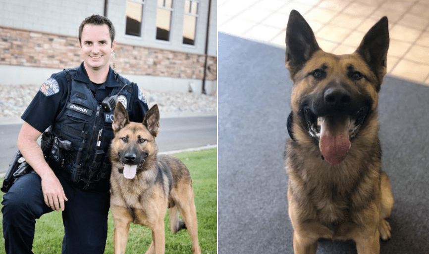 Officer down: Utah K-9 Officer shot in the face during shootout with suspects