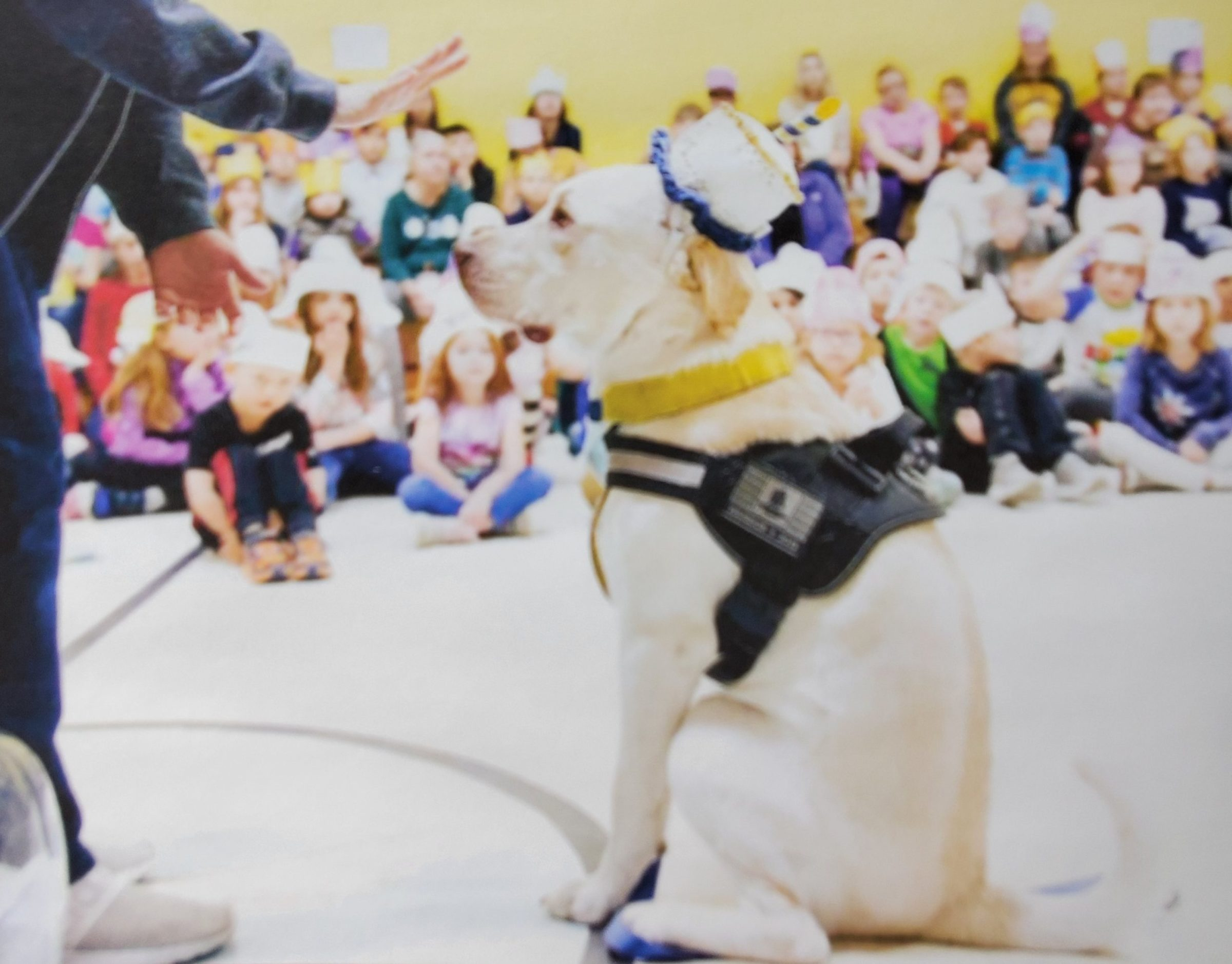Disabled veteran: 'Lucky: Little Guy Big Mission' kids book is something every American should read