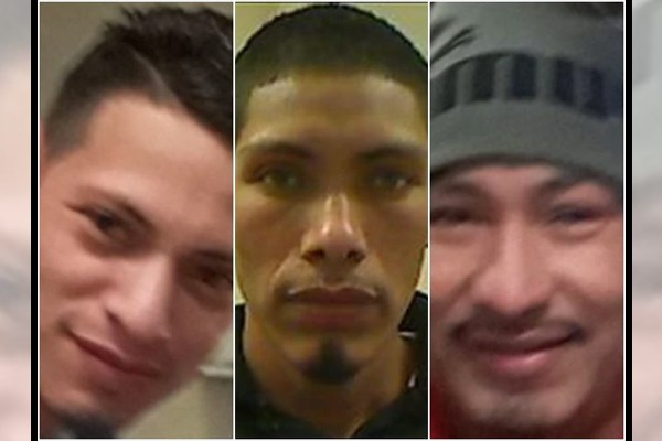 Three illegal immigrants accused of raping 10-year-old girl - and potentially other minors as well
