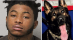 Teen wants leniency after murdering police K9 – faces 35 years in prison for kidnapping, armed robbery and killing