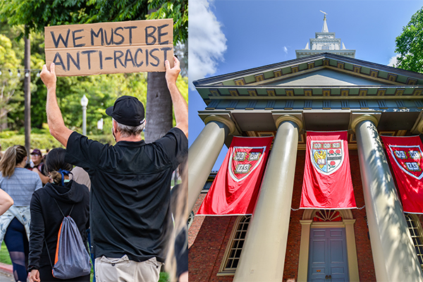 Looking for a job? Harvard University is hiring an Associate University Librarian for 'anti-racism'