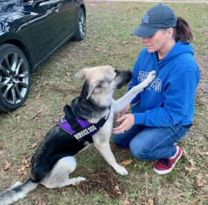 'Steadfast Service Dogs' has provided trained service dogs to countless people in need.  Now they need our help.