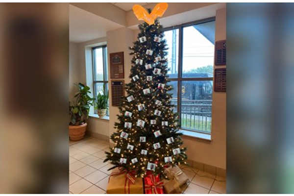 Police get death threats after sheriff's department 'decorates' Christmas tree with 'thugshots'