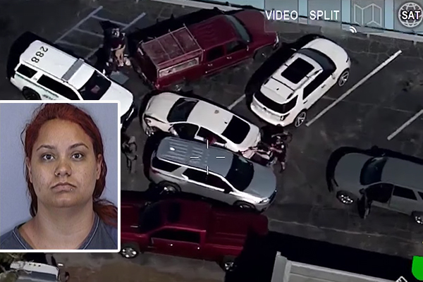 Florida officer hit with stolen car, sent airborne. Police rush in and take down driver - and it was all caught on camera.