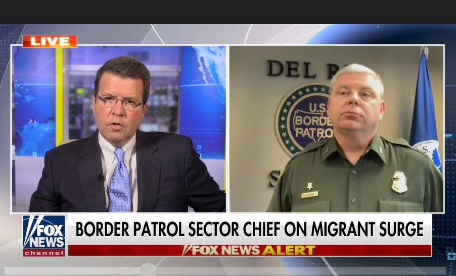 """Border Patrol sector chief: arrests of sex offenders """"up significantly over 2000%"""""""
